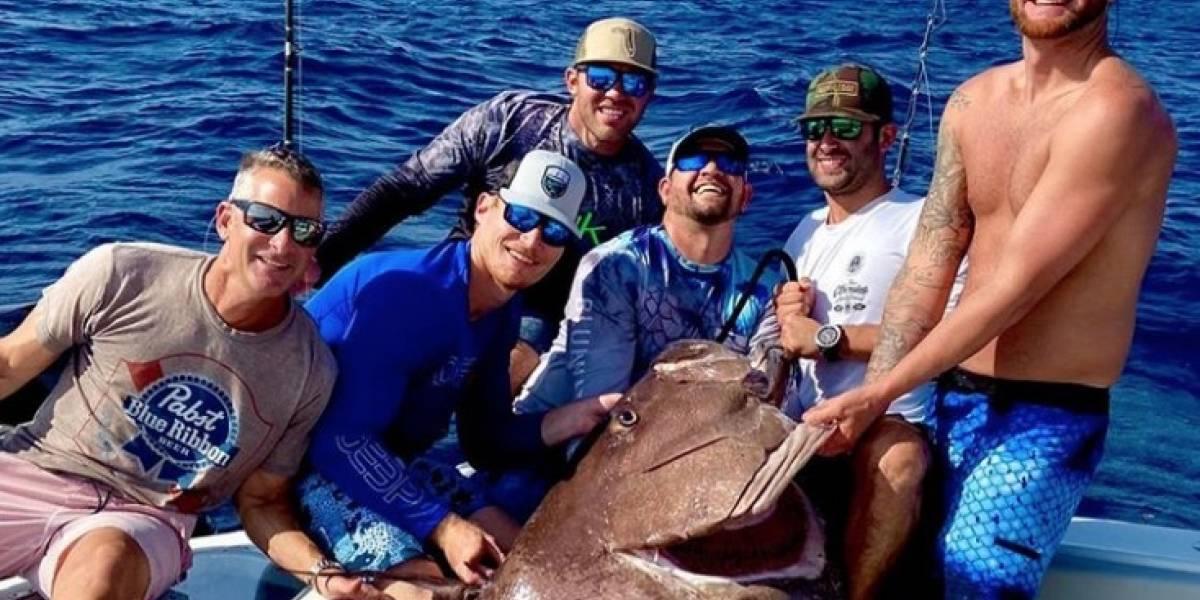 Atrapan gigantesco pez de 160 kilos y está al borde de la extinción