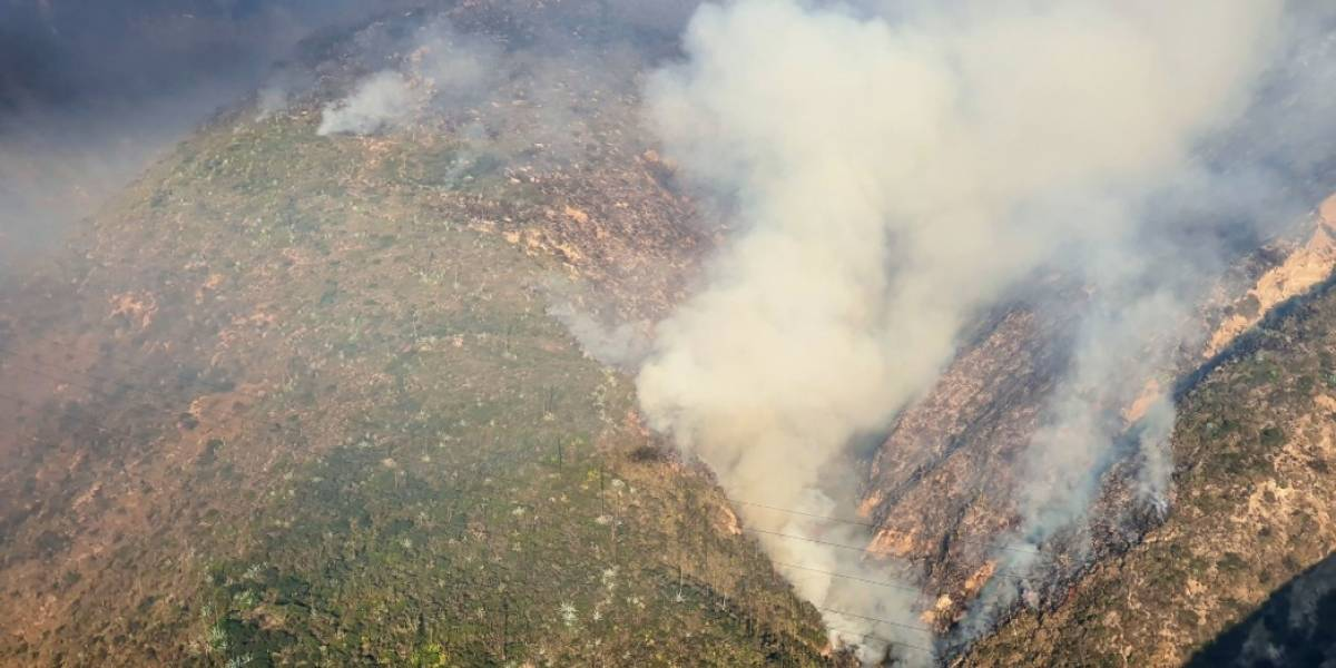 Incendio en cerro Casitagua: Una persona salió en libertad tras ser detenida