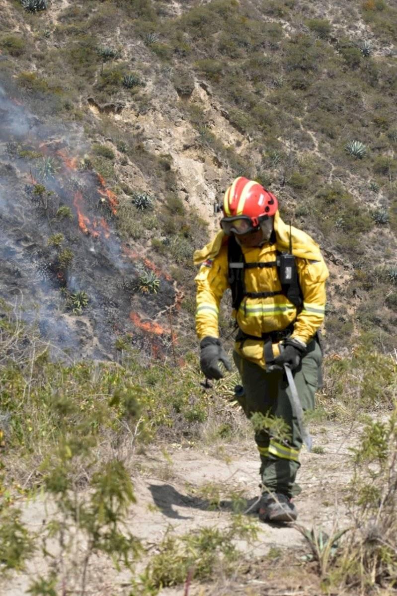 Más de 200 efectivos trabajan para erradicar las llamas en el cerro Casitagua