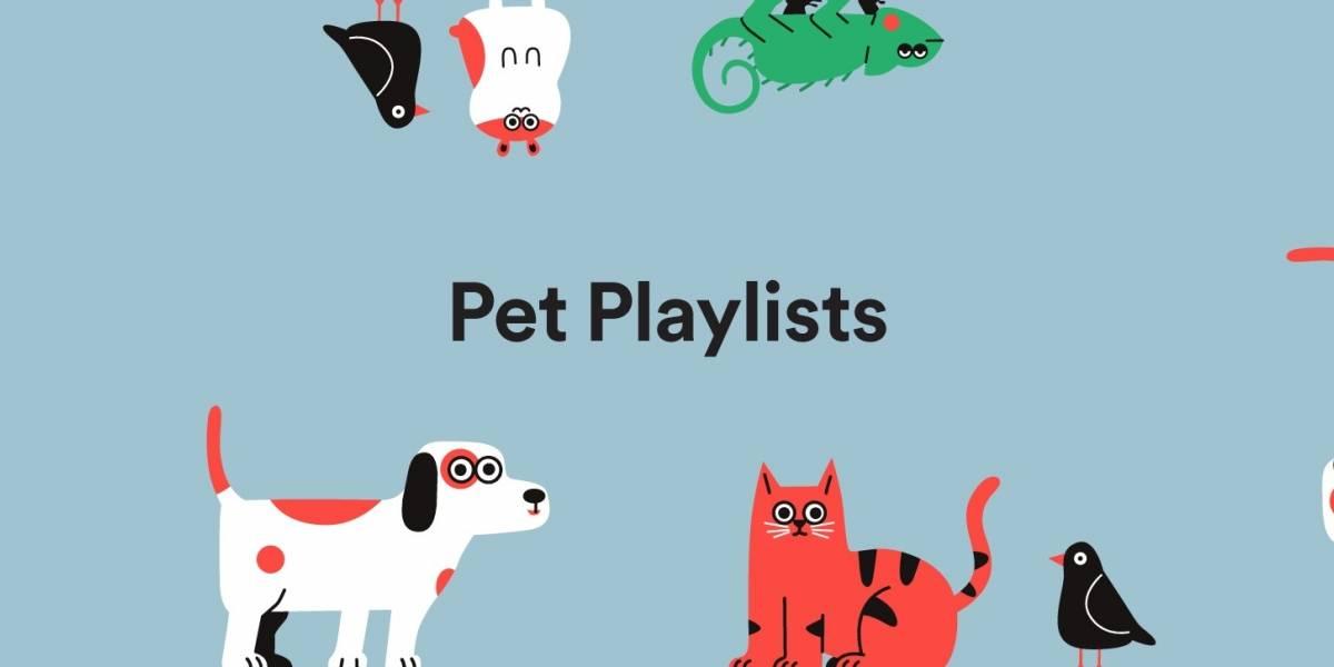 Spotify crea listas de música para mascotas que se quedan solas en casa