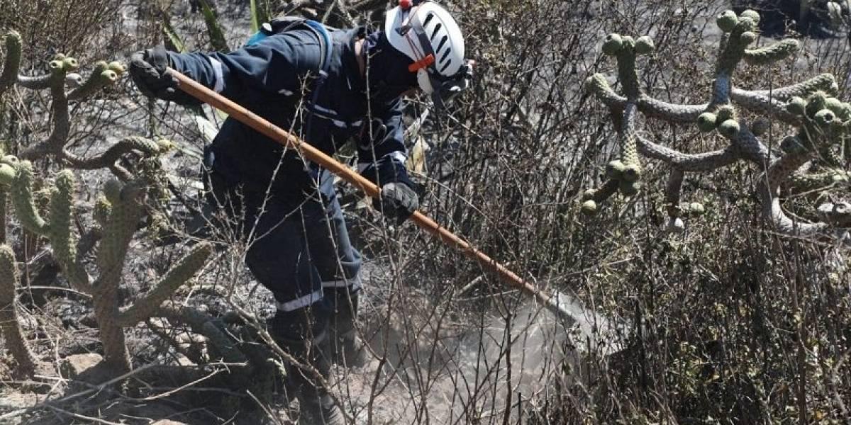 Pomasqui: Dos flancos activos en incendio del cerro Casitagua