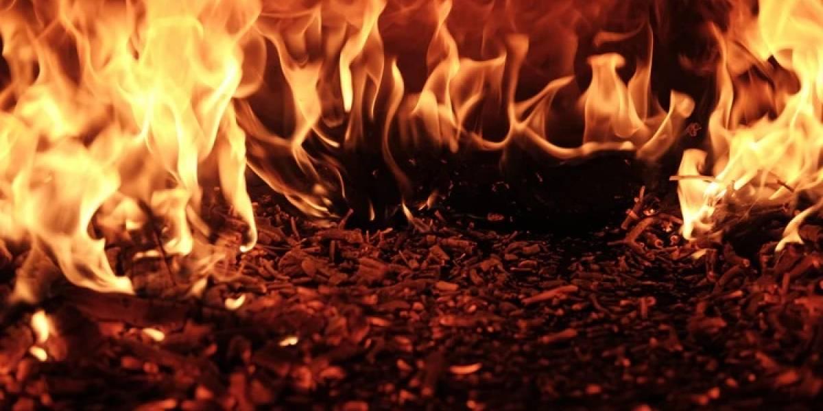 Planeta en llamas: Incendios forestales por el cambio climático y agravamiento de los enfrentamientos políticos