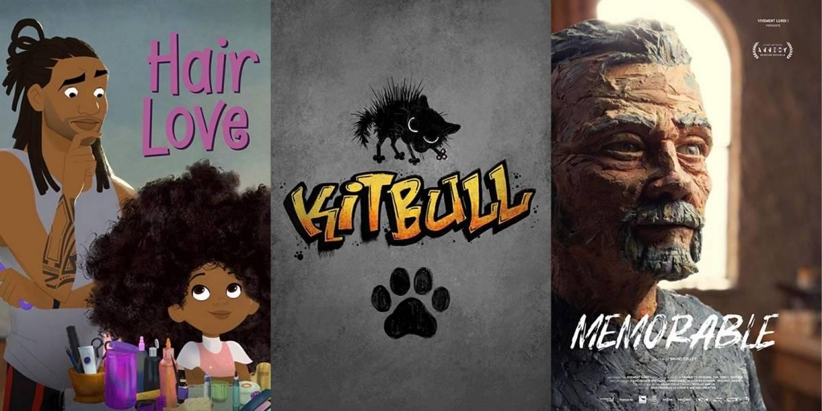 Oscar 2020: assista aqui aos indicados a melhor curta-metragem de animação
