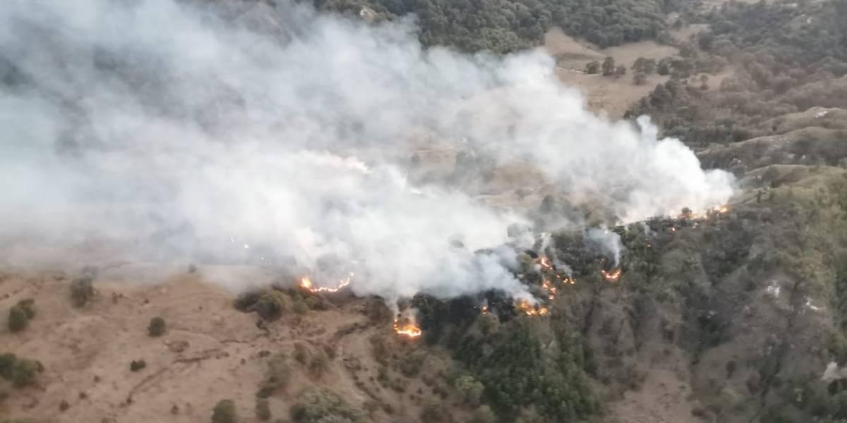 Se registra el primer incendio del año en el Bosque de la Primavera