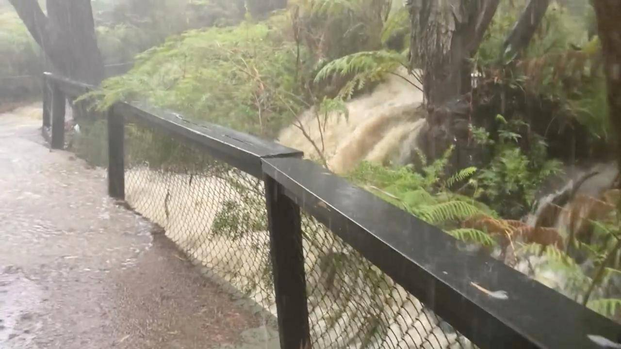 "Australia: Clima ""apocalíptico"" preocupa a los expertos"