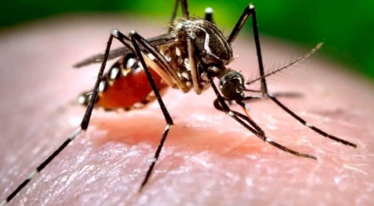 Coronavirus: Estos son los mitos falsos que rodean a la enfermedad