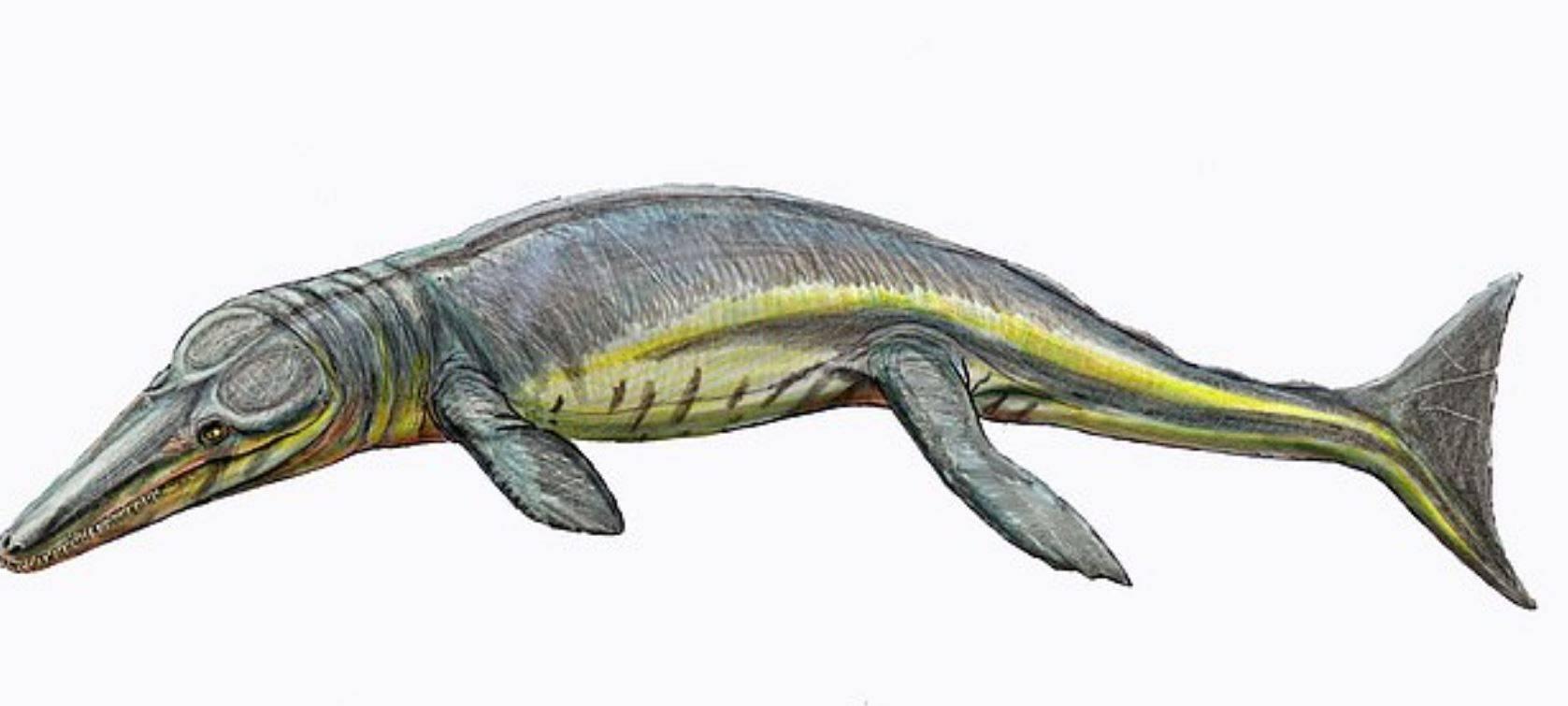 cocodrilos prehistóricos