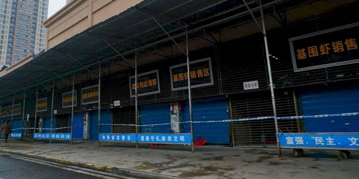 Ratas, serpientes y cachorros de lobo: así es el exótico mercado de Wuhan donde se habría originado el brote de coronavirus