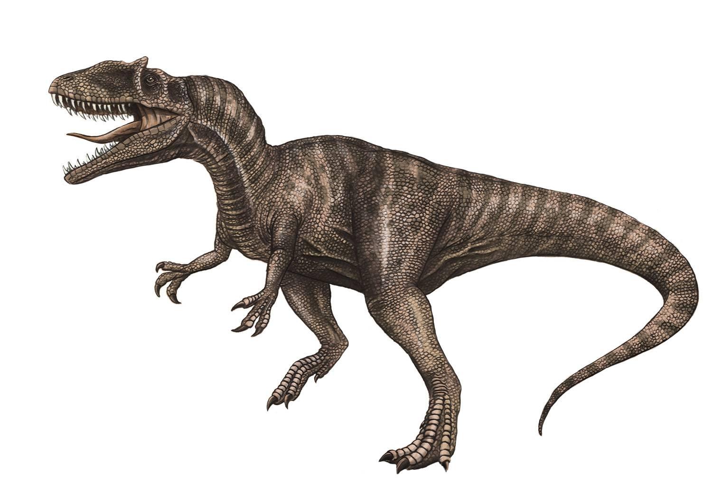 dinosaurio terópodo