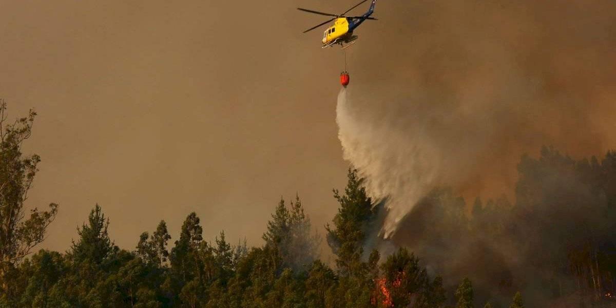 Se declaró alerta roja: incendios forestales consumen más de 500 hectáreas en Biobío y La Araucanía