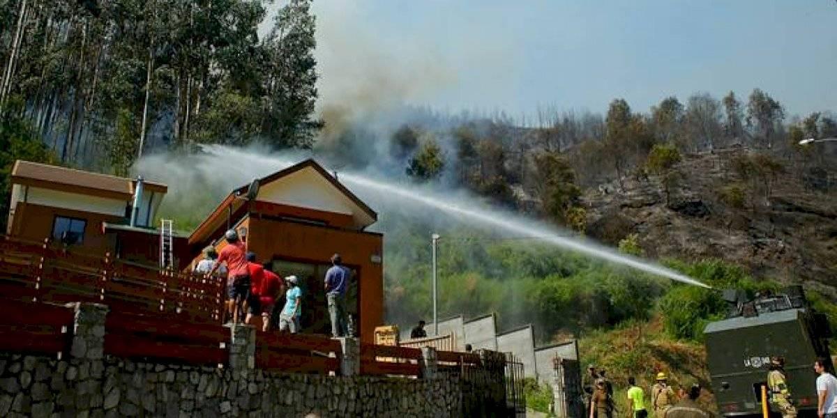 """Incendios forestales en el Biobío han consumido al menos tres viviendas: """"Es el más complejo que hemos enfrentado hasta ahora"""""""