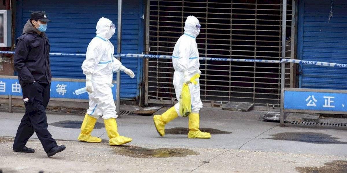 Investigación de Harvard lo confirma: coronavirus circulaba en Wuhan en agosto