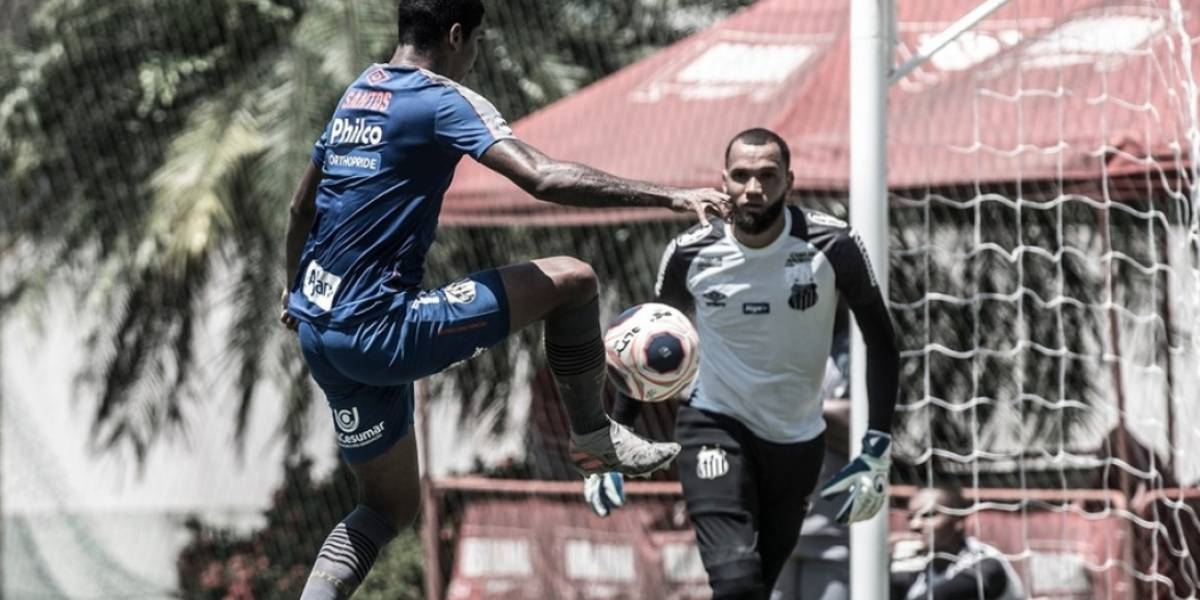 Campeonato Paulista: Onde acompanhar ao vivo o jogo Guarani x Santos
