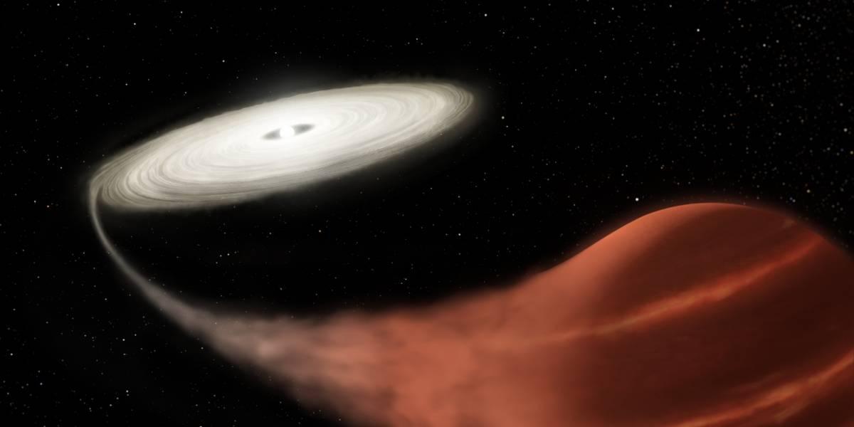 Observatório Kepler da NASA registra 'sistema de estrelas vampiras' durante super-explosão