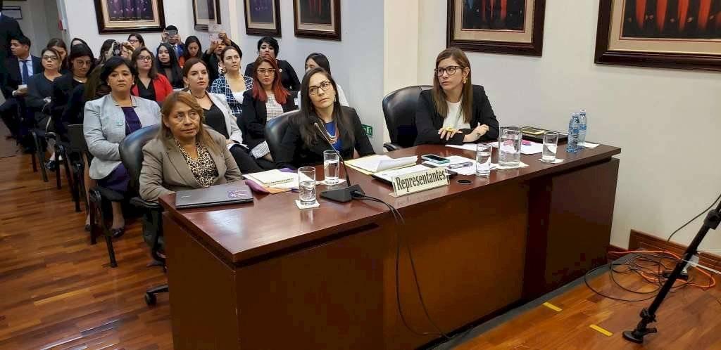 Corte Interamericana de Derechos Humanos en el caso de Paola Guzmán