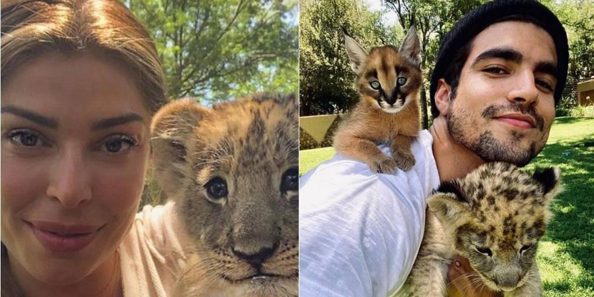 Após crítica de Luisa Mell, Grazi Massafera apaga foto com filhote de leão