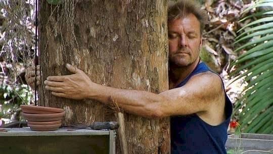 Salud abrazar árboles