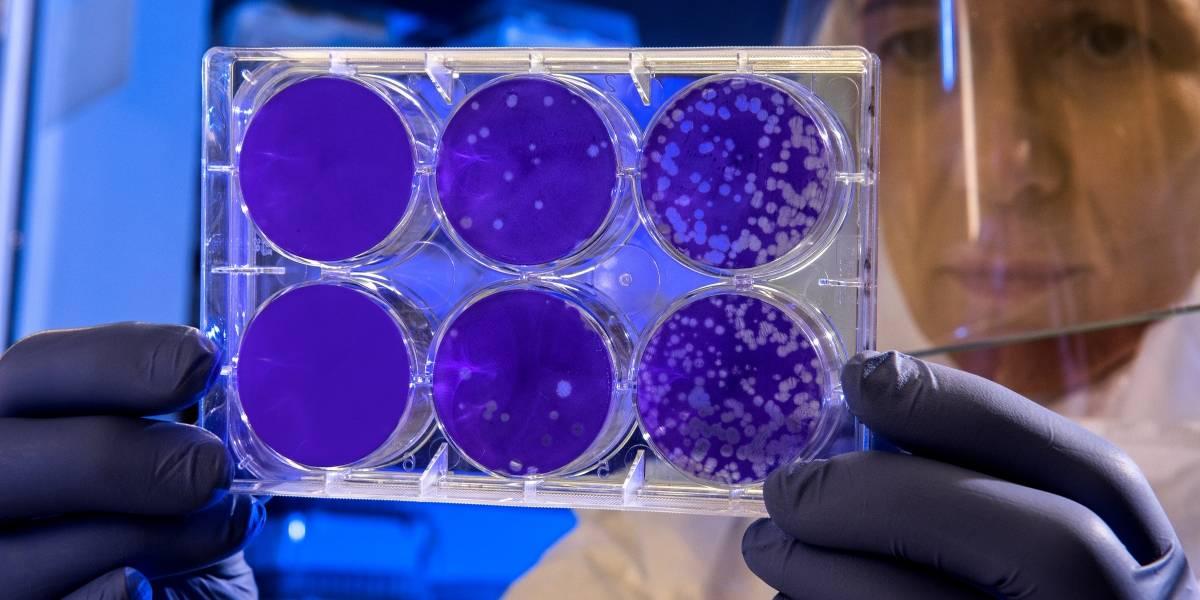 Brasil monitora 14 casos suspeitos de coronavírus
