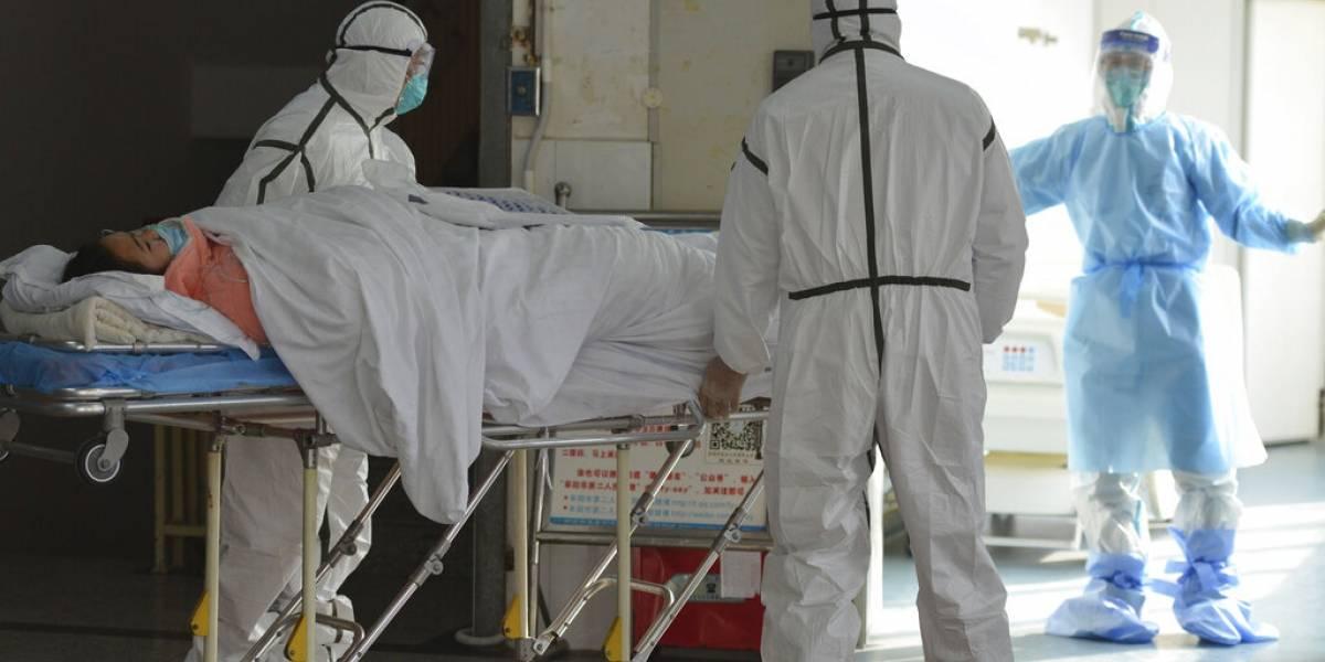 OMS a gobiernos: prepárense para brotes locales de virus
