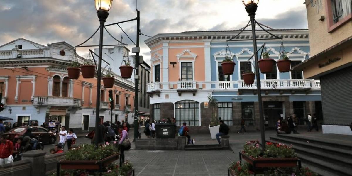 Roban macetas de geranios en Quito a horas de su colocación