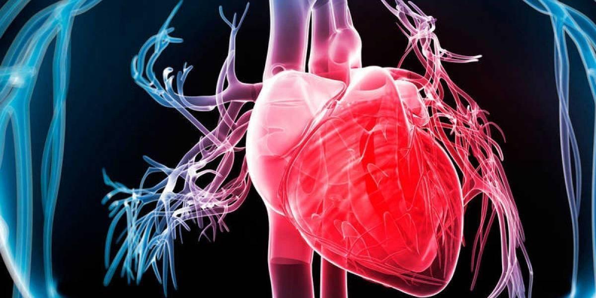 Científicos japoneses logran el primer trasplante de células madre para tratar los infartos