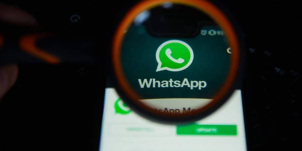 Llegó febrero y estas son todas las novedades que traerá WhatsApp