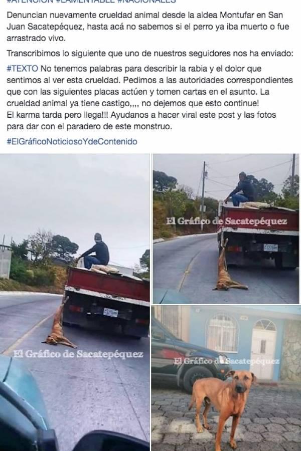 Publicación de perro arrastrado por camión