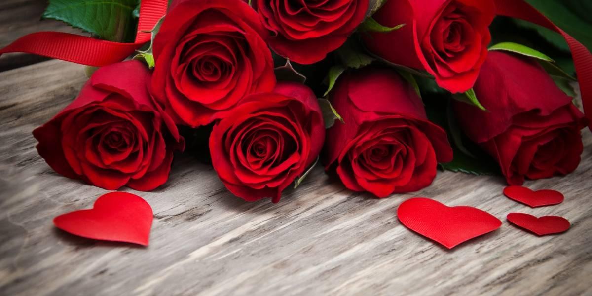 ¿Por qué se regalan rosas rojas el día de San Valentín?
