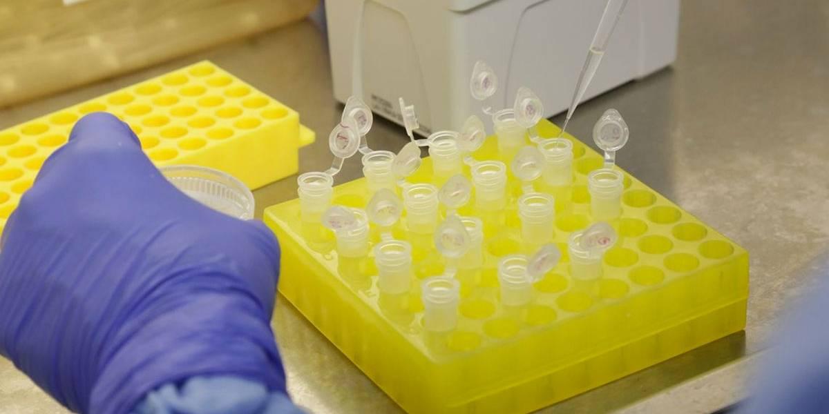Brasil monitora cinco casos suspeitos de coronavírus