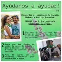 Perros Rodrigo y natalia