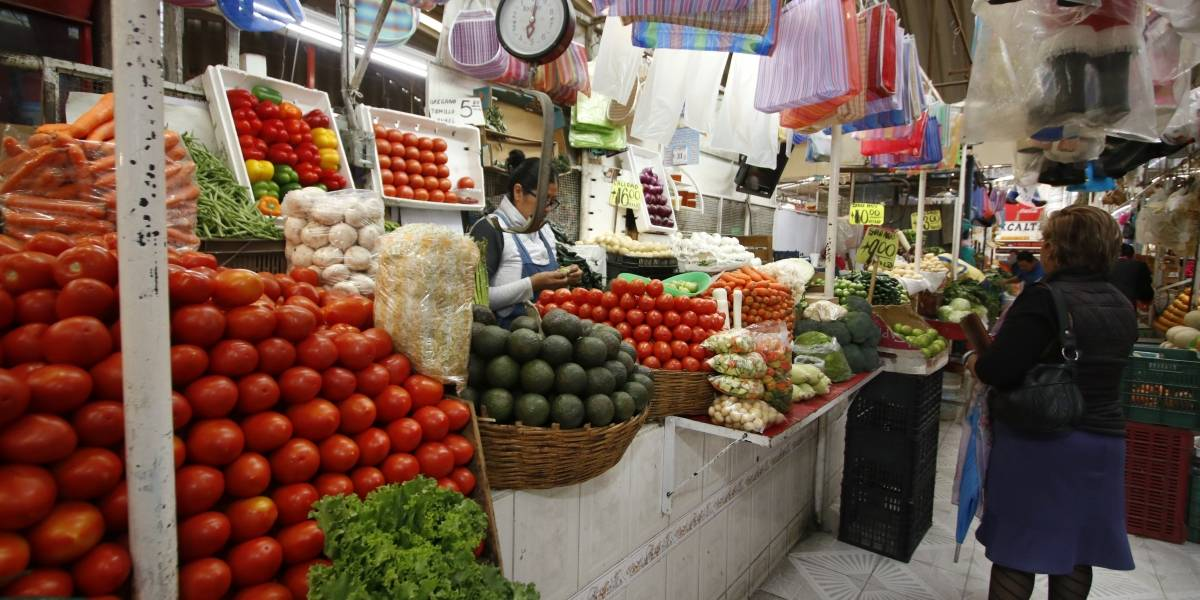 Entregarán bolsas ecológicas en mercados de Puebla