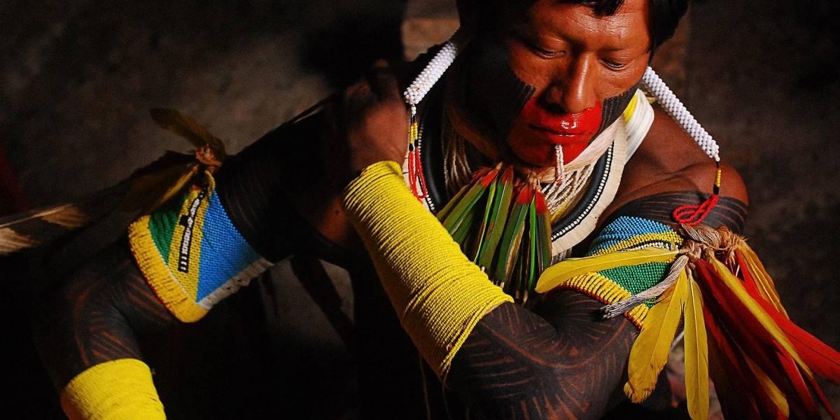 Funai contraria regimento e autoriza contato com povos indígenas isolados