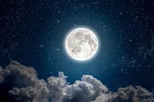 """""""Luna de nieve"""""""