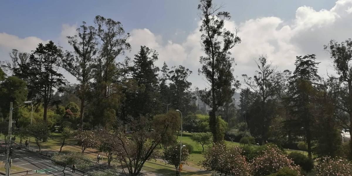 Parques de Quito se habilitan este 3 de junio pero no para actividades deportivas