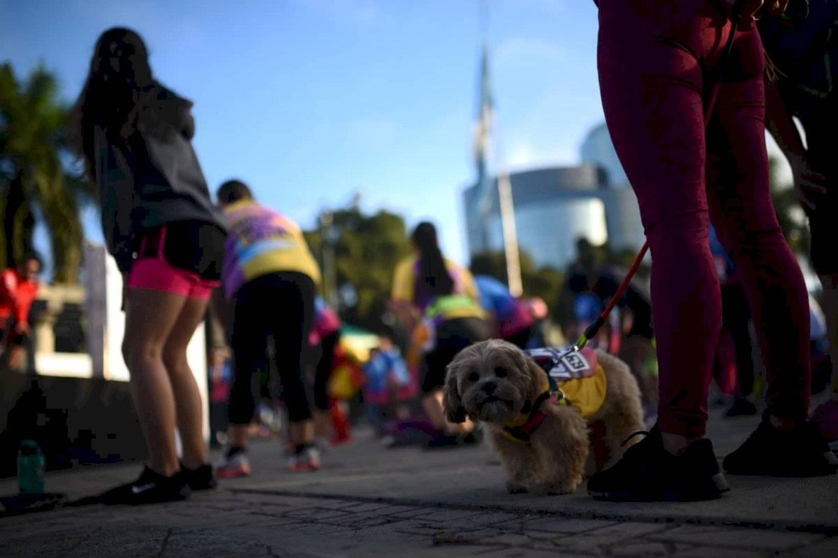 Foto Edwin Bercián | Algunos corredores decidieron llevar a sus mascotas.