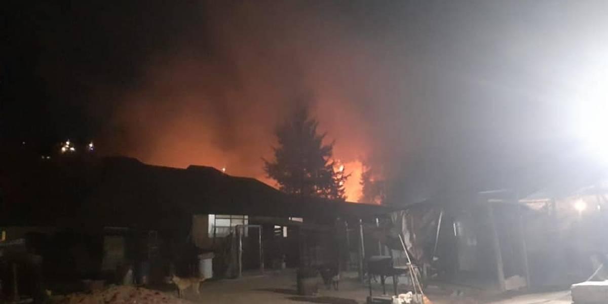 Incendian por quinta vez refugio de animales en Edomex