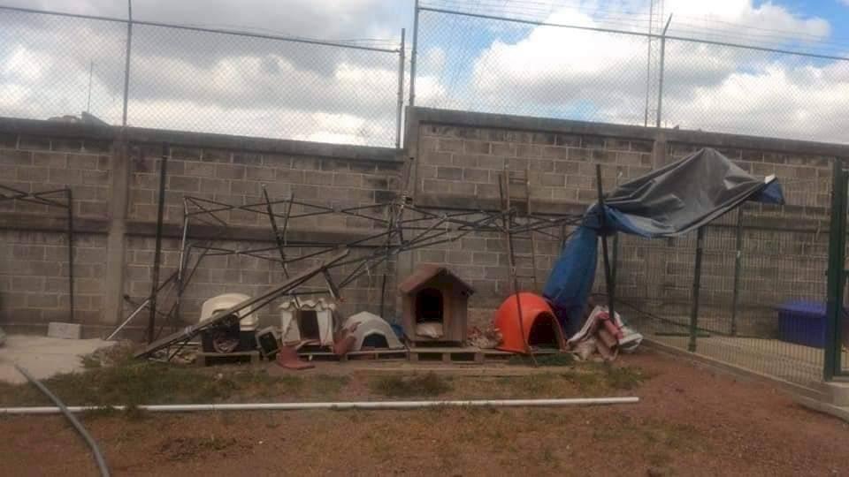 El refugio después del incendio que tuvo lugar en la madrugada.