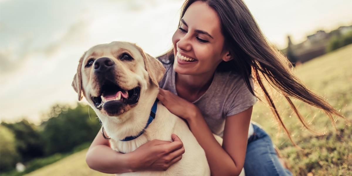 ¿Quieres adoptar un perrito? ¡Llega Feria de la Mascota de Walmart!