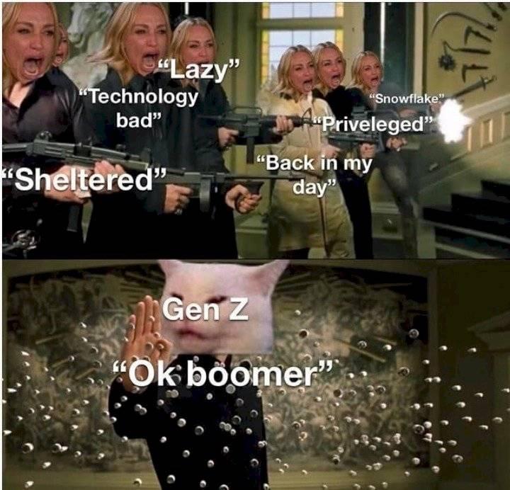 """""""OK, boomer"""", comentario que invade las redes sociales Internet"""