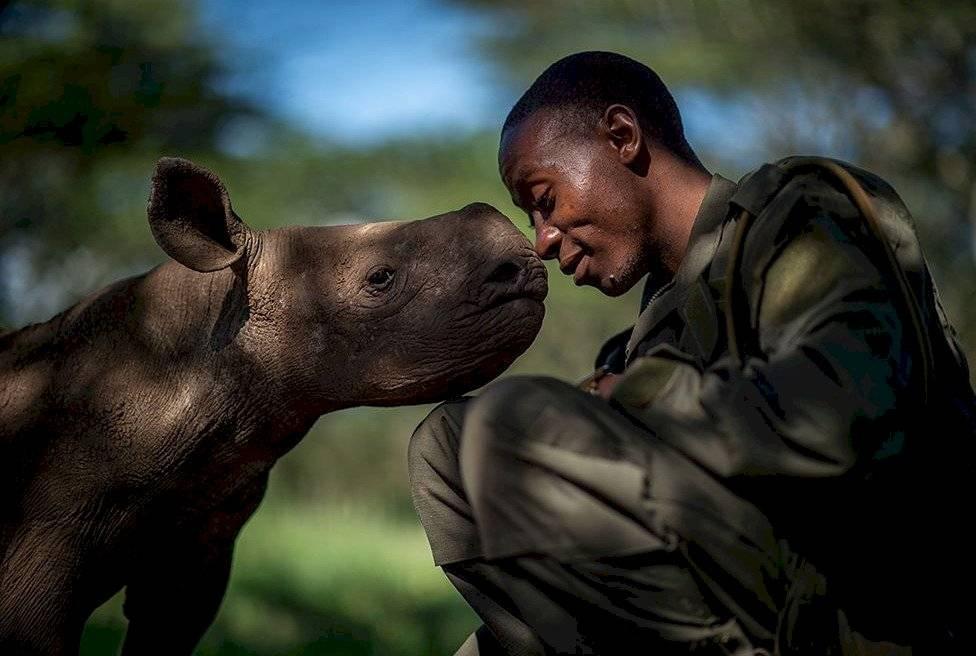 El conmovedor retrato de un guarda forestal y el rinoceronte negro bebé en su cuidado