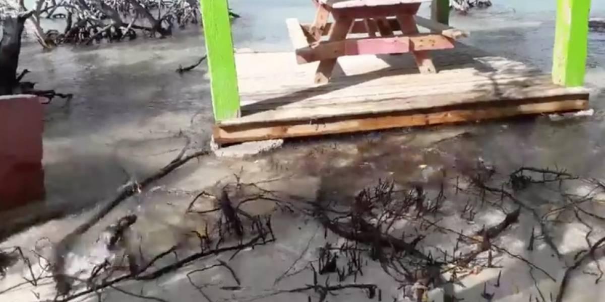Dramático video muestra como Guilligan está casi bajo agua