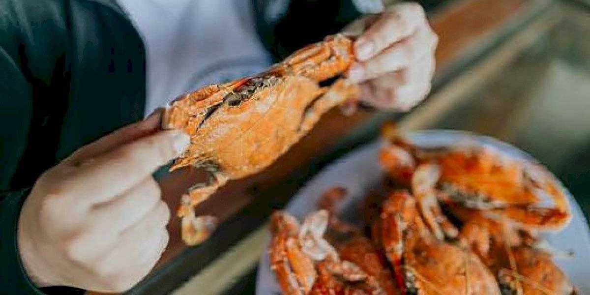 ¿Cuándo empieza la veda de cangrejos en Ecuador?
