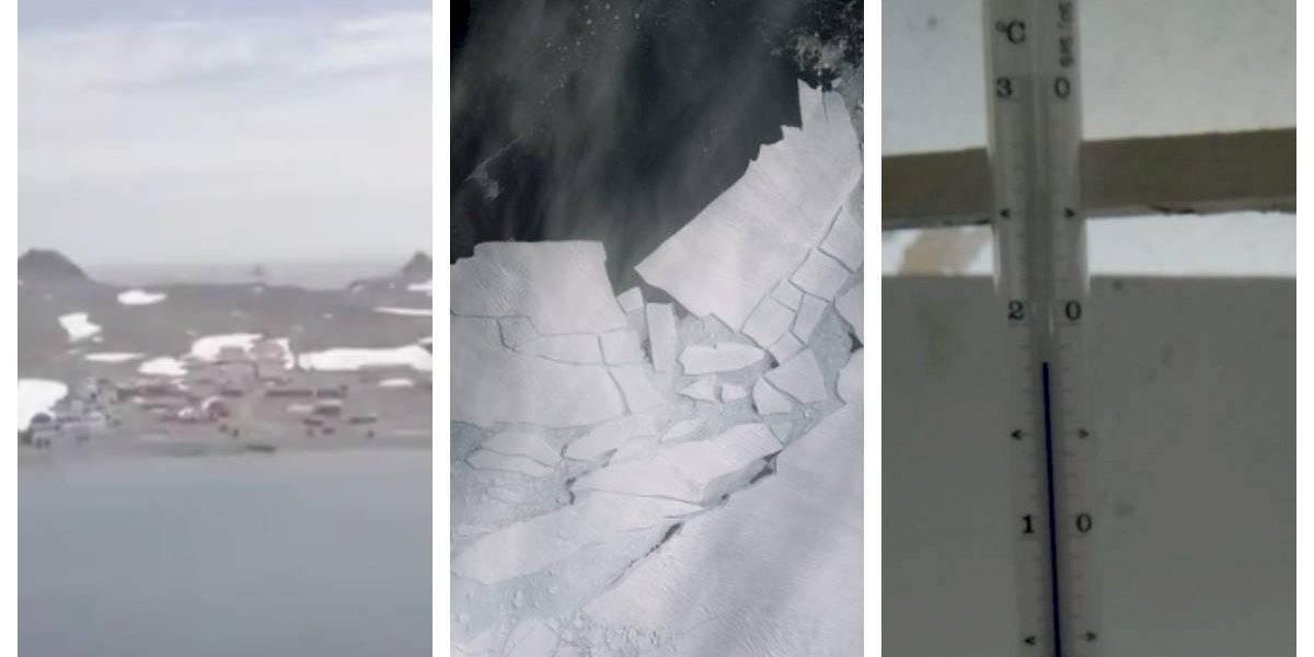 [Video] Científicos revelaron preocupantes imágenes de la Antártica chilena sin nieve