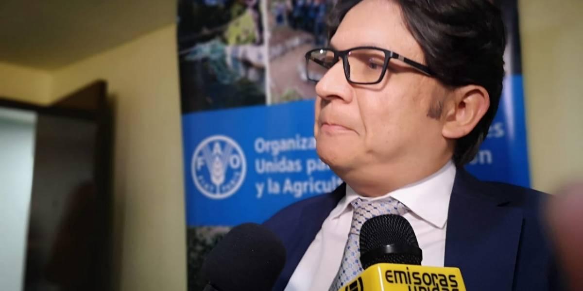 FAO aporta Q6 millones al país para los sectores agrícola y forestal