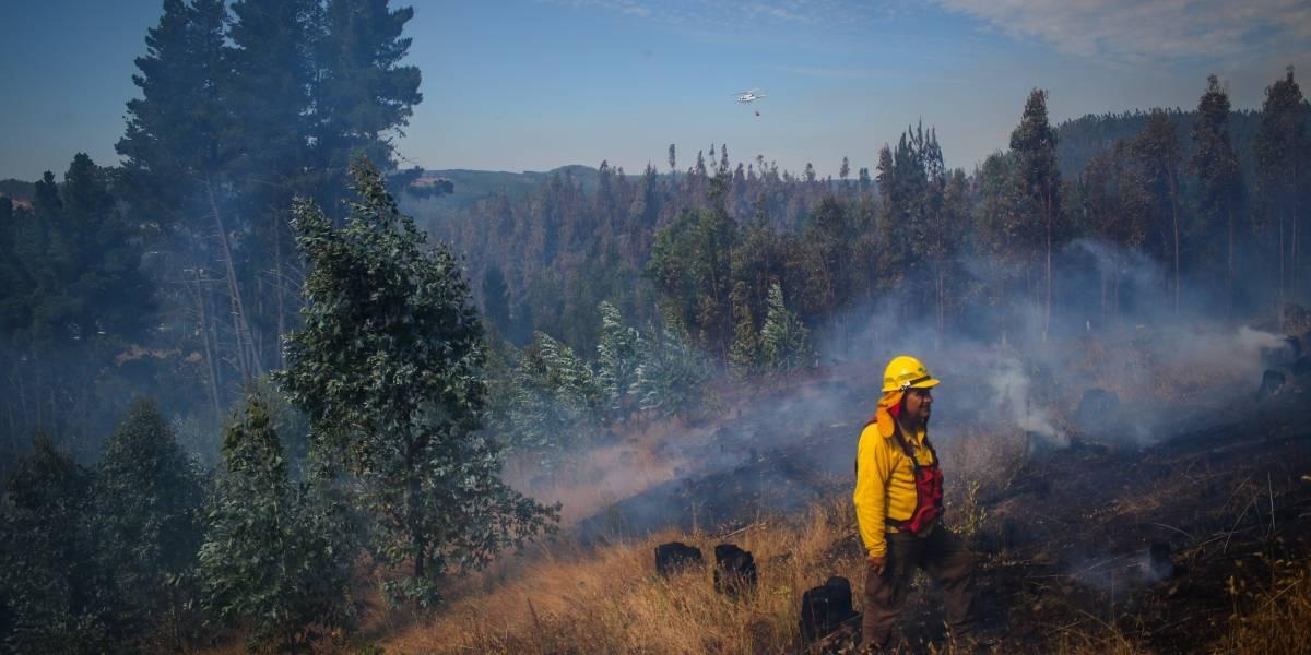 35% de los incendios forestales son intencionales a nivel nacional 4.714 incendios forestales se han registrado en esta temporada