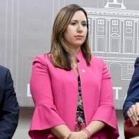Archivan querellas contra Principal Oficial de Información del Gobierno