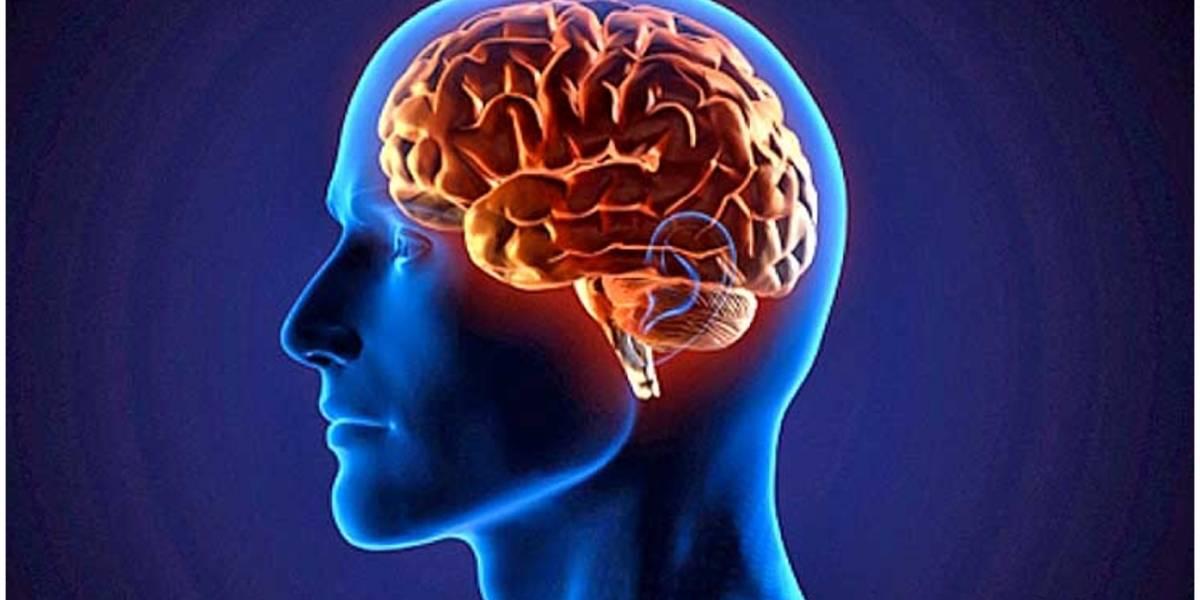 Salud: Qué es la enfermedad de Alexander y cuáles son sus síntomas