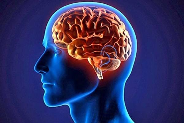 Enfermedades sintomas nerviosas de