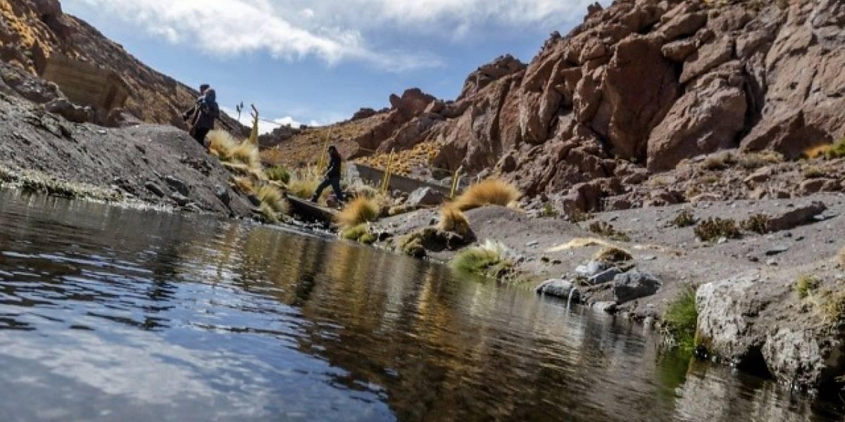 "Bolivia: Entrega de aguas del río Silala a Chile será ""bajo compensación"""