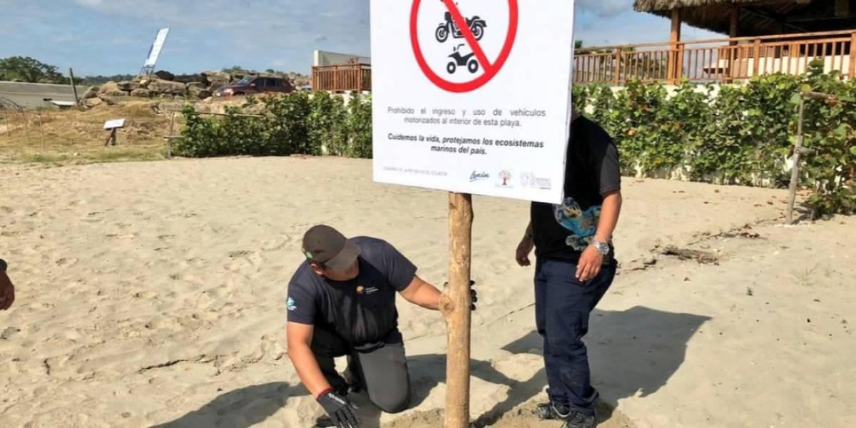 Estas son las playas de Ecuador donde se prohibe la circulación de vehículos motorizados
